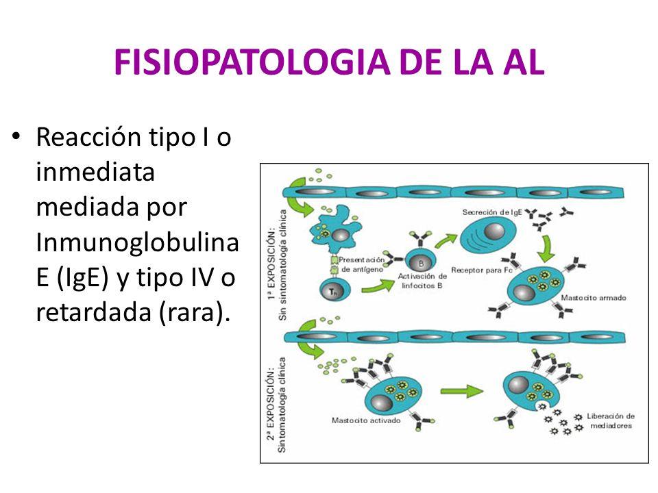 FISIOPATOLOGIA DE LA AL