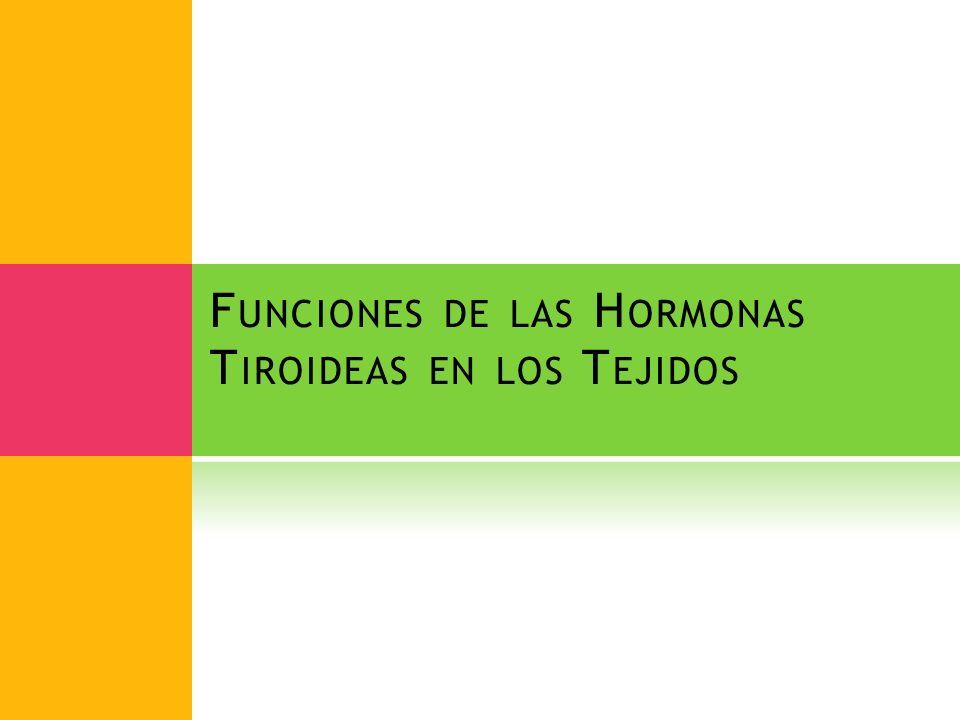 Funciones de las Hormonas Tiroideas en los Tejidos