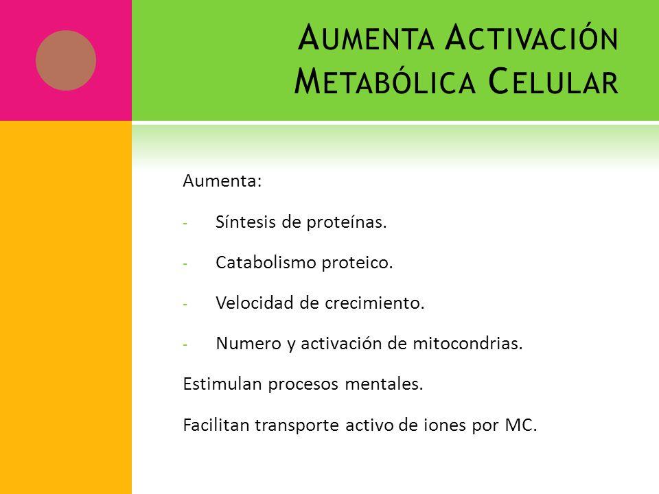 Aumenta Activación Metabólica Celular