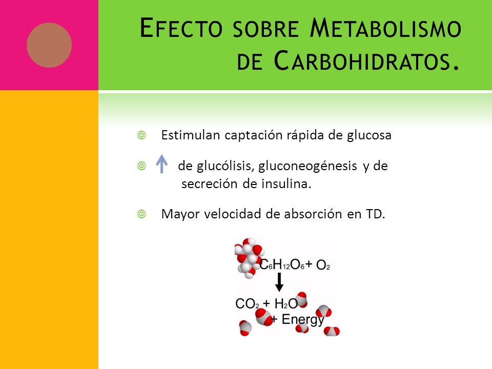 Efecto sobre Metabolismo de Carbohidratos.