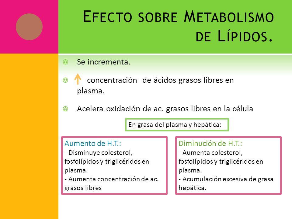 Efecto sobre Metabolismo de Lípidos.