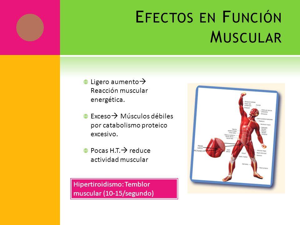 Efectos en Función Muscular