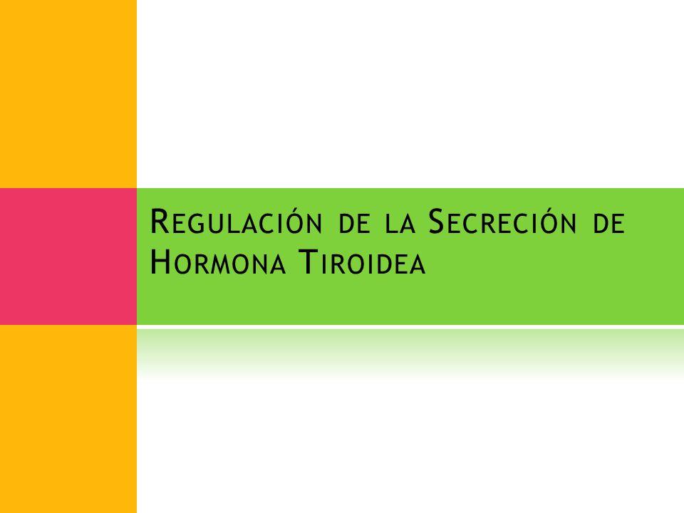 Regulación de la Secreción de Hormona Tiroidea
