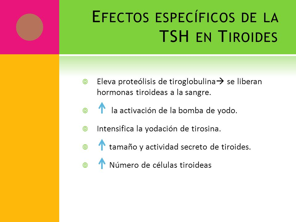 Efectos específicos de la TSH en Tiroides