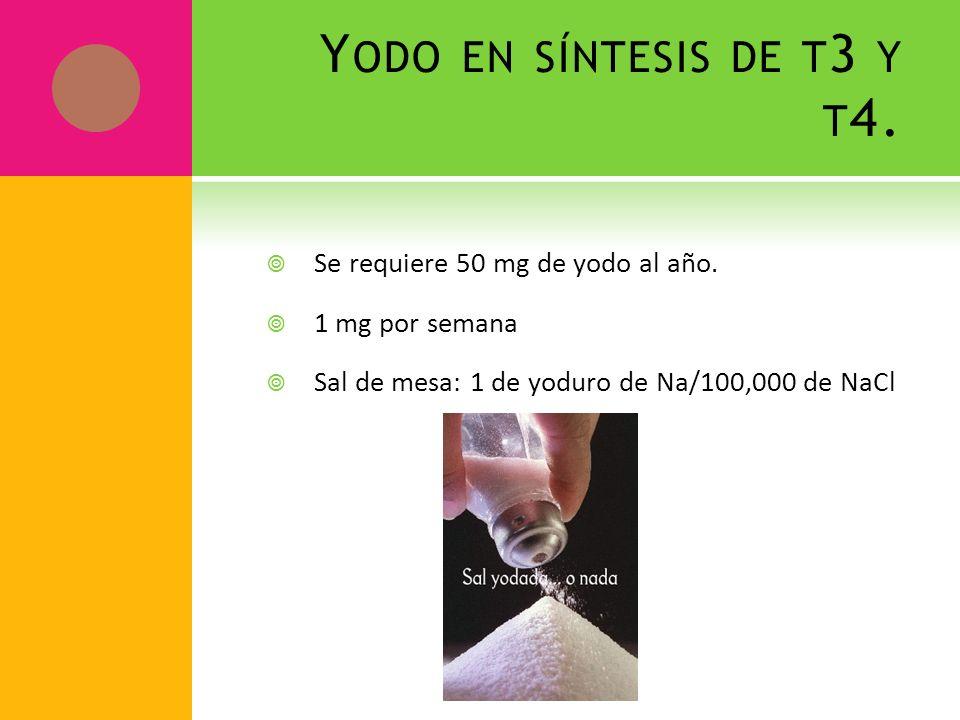Yodo en síntesis de t3 y t4. Se requiere 50 mg de yodo al año.