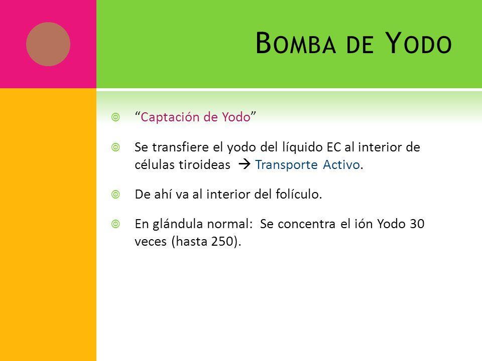 Bomba de Yodo Captación de Yodo