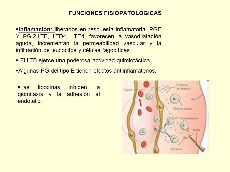 FUNCIONES FISIOPATOLÓGICAS