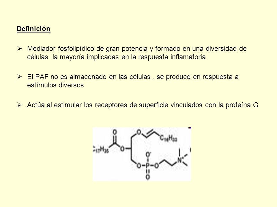 Definición Mediador fosfolipídico de gran potencia y formado en una diversidad de células la mayoría implicadas en la respuesta inflamatoria.