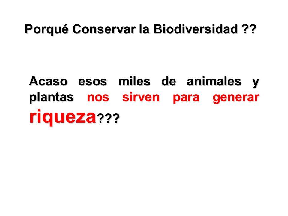 Porqué Conservar la Biodiversidad