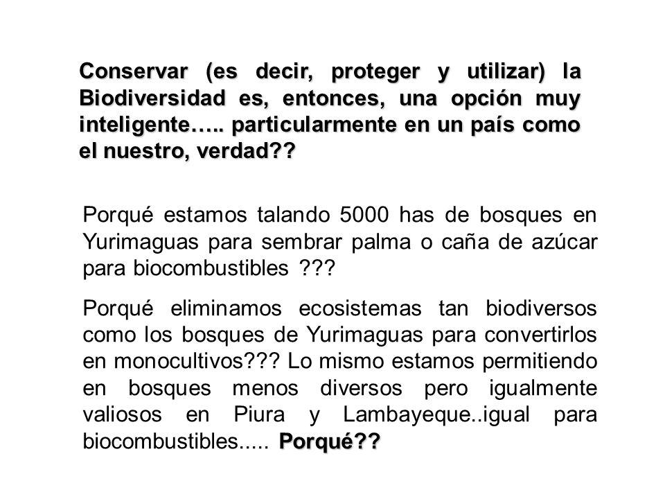Conservar (es decir, proteger y utilizar) la Biodiversidad es, entonces, una opción muy inteligente….. particularmente en un país como el nuestro, verdad