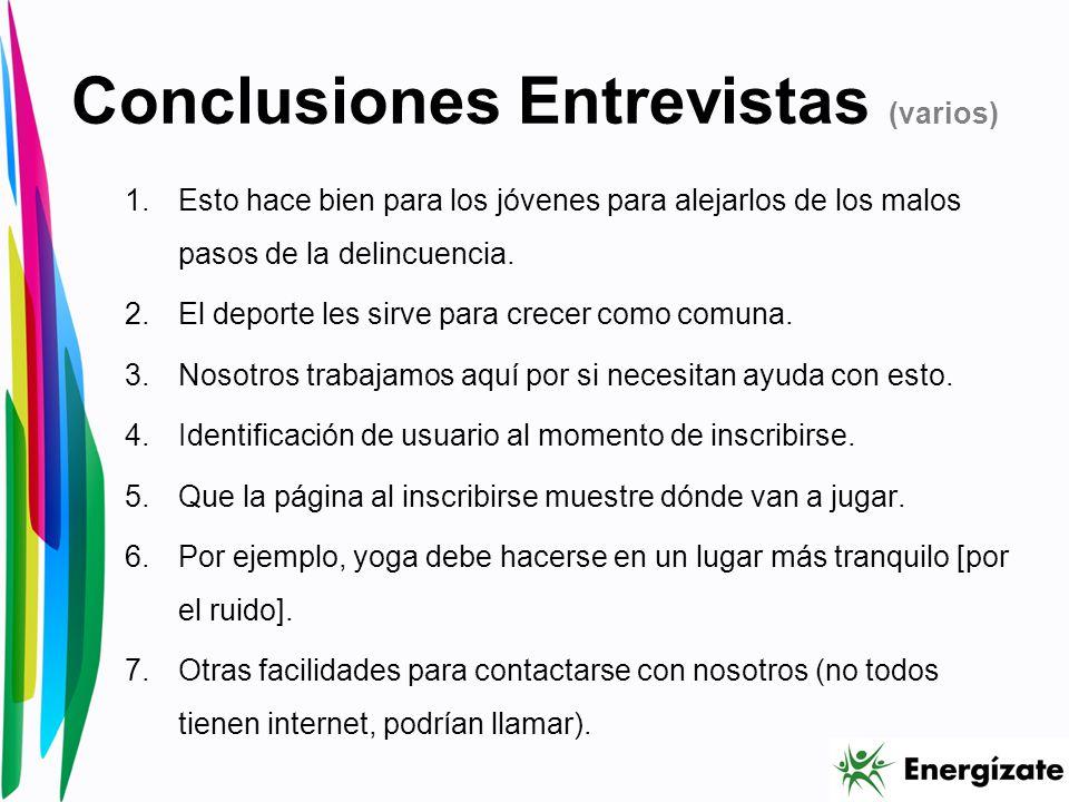 Conclusiones Entrevistas (varios)