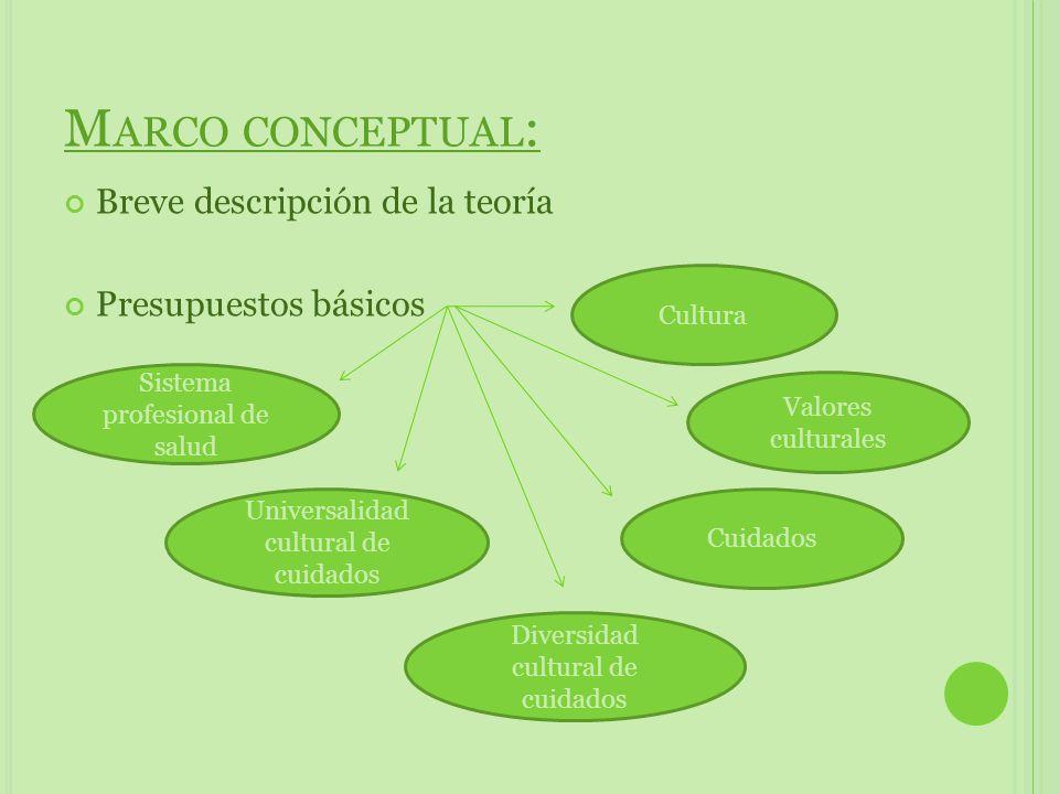 Marco conceptual: Breve descripción de la teoría Presupuestos básicos