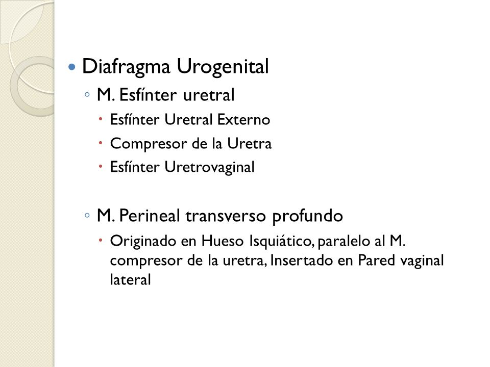 Diafragma Urogenital M. Esfínter uretral