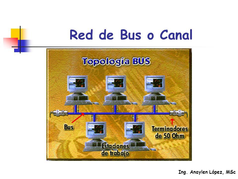 Red de Bus o Canal
