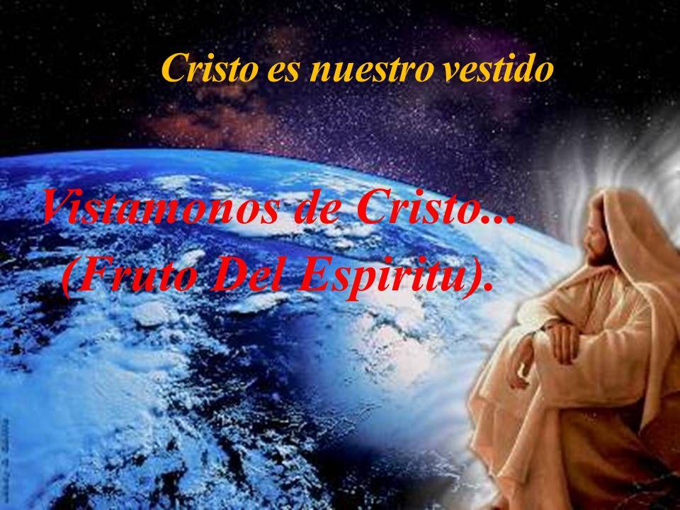 Cristo es nuestro vestido