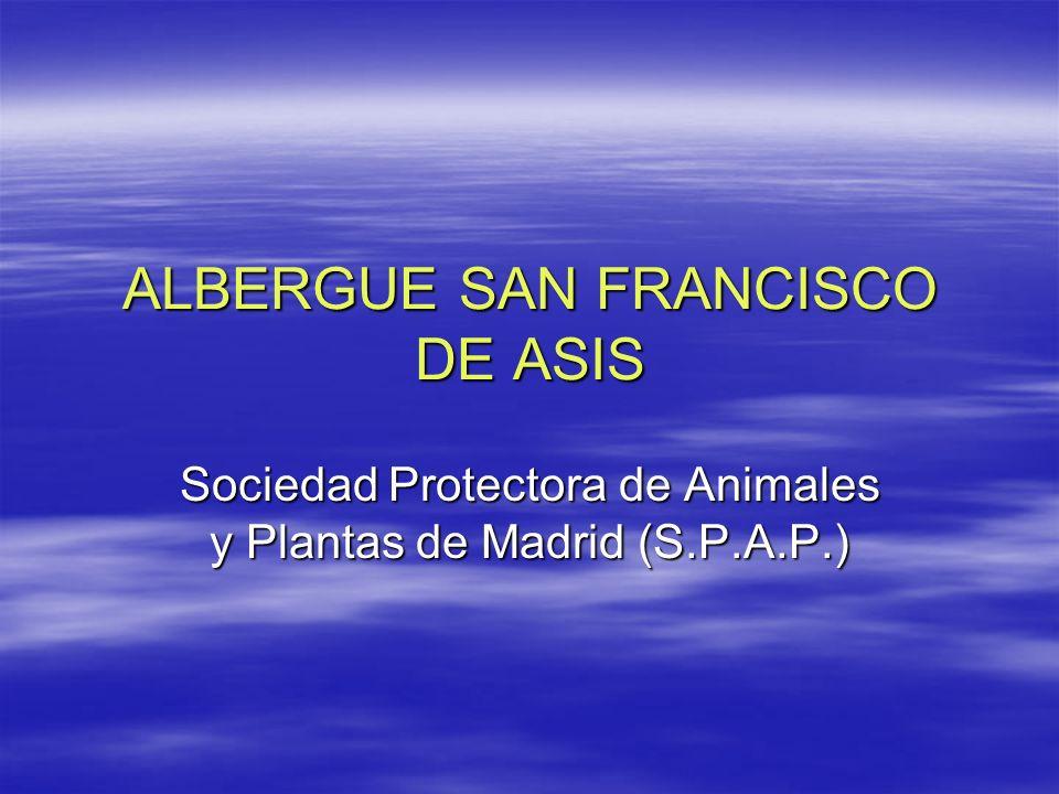 ALBERGUE SAN FRANCISCO DE ASIS