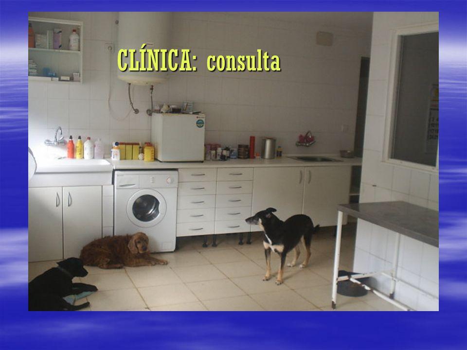 CLÍNICA: consulta