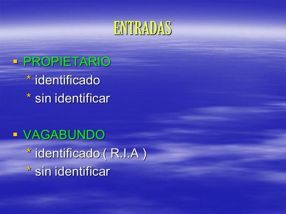 ENTRADAS PROPIETARIO * identificado * sin identificar VAGABUNDO