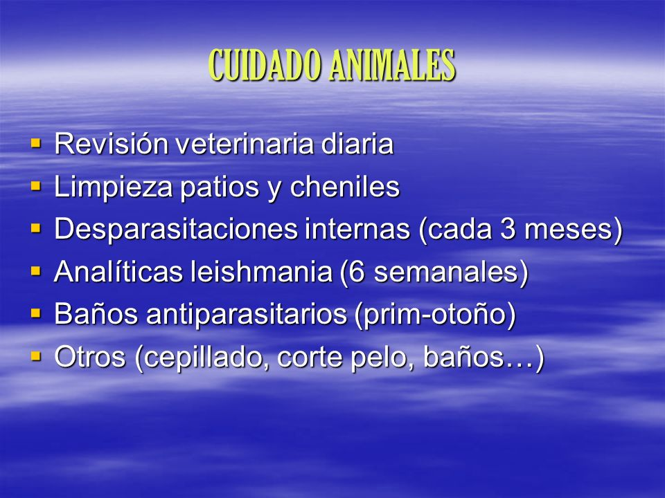 CUIDADO ANIMALES Revisión veterinaria diaria