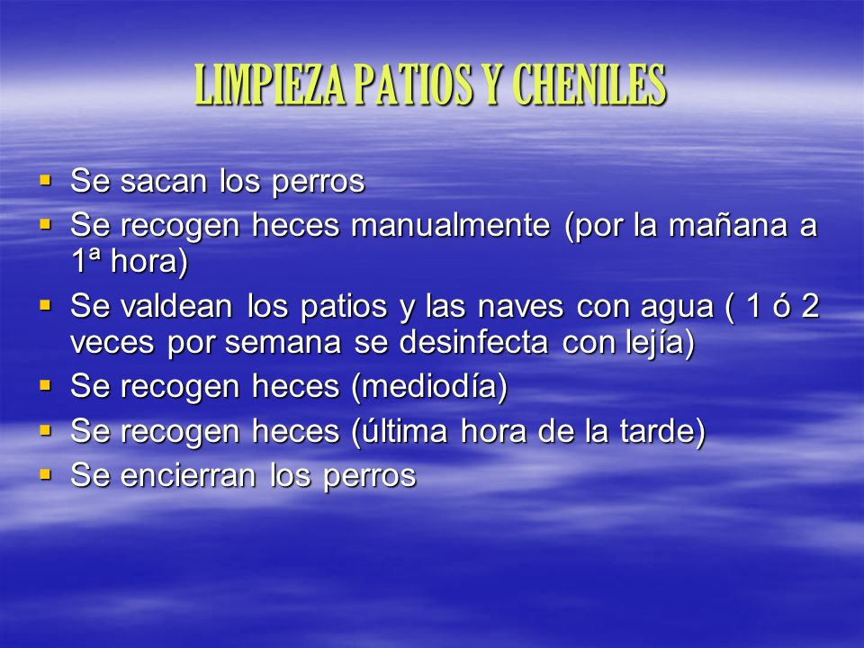 LIMPIEZA PATIOS Y CHENILES