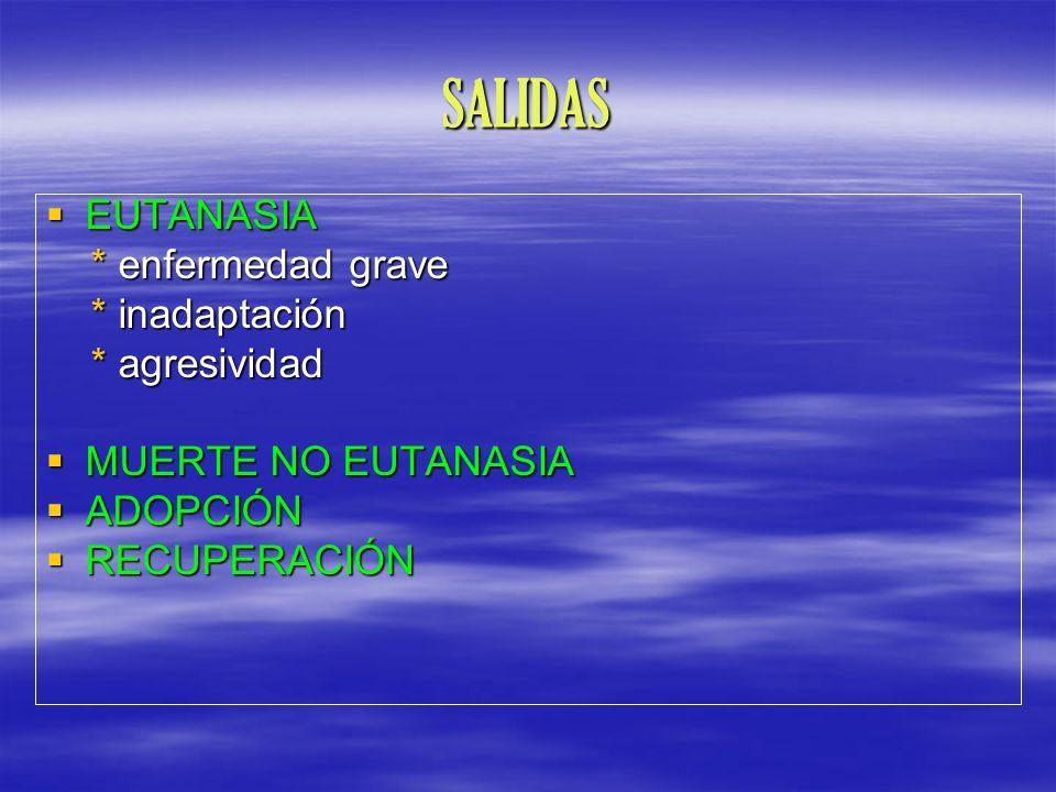 SALIDAS EUTANASIA * enfermedad grave * inadaptación * agresividad