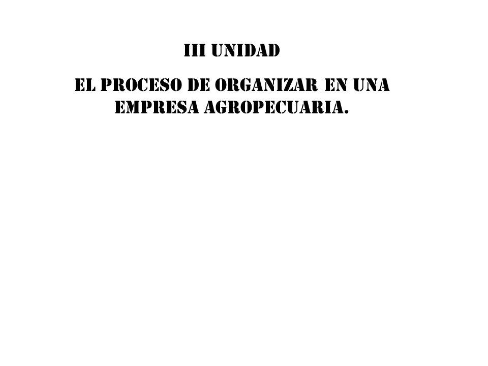 EL PROCESO DE ORGANIZAR en una empresa agropecuaria.