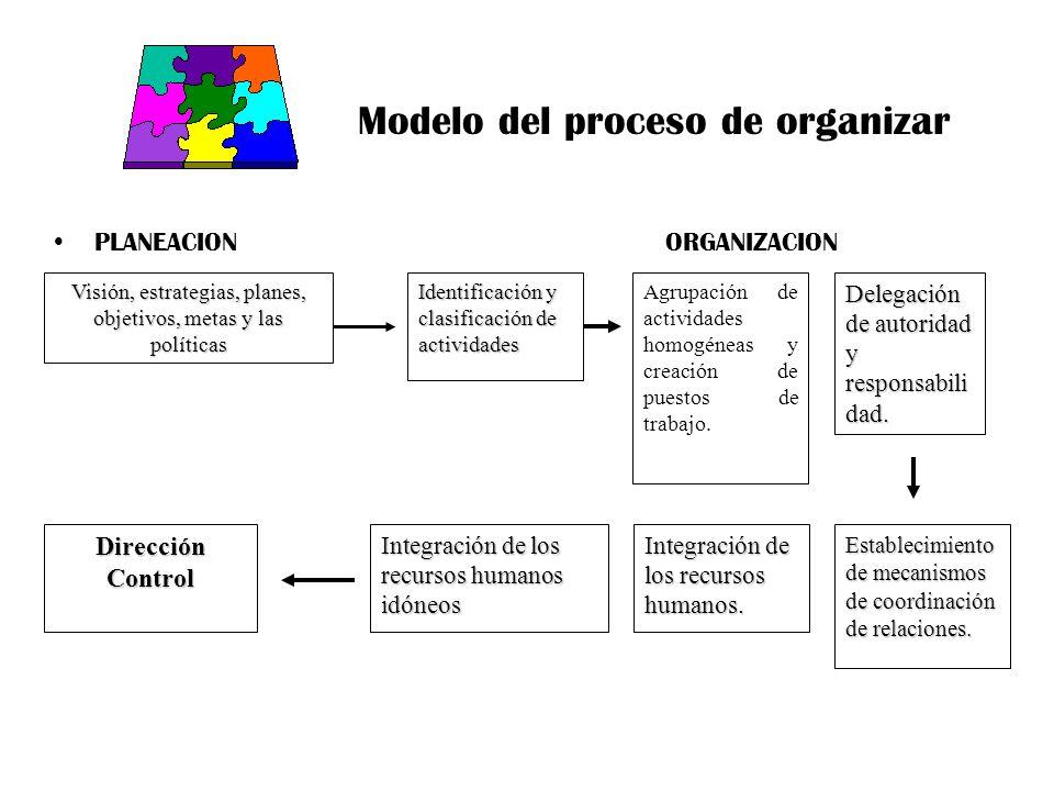 Modelo del proceso de organizar