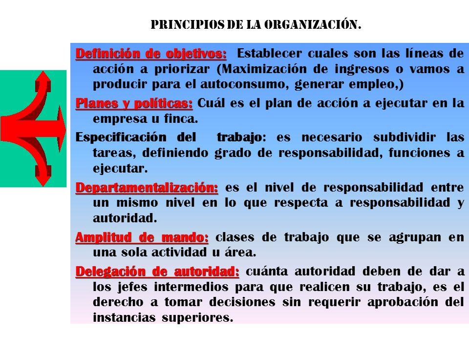 Principios de la organización.