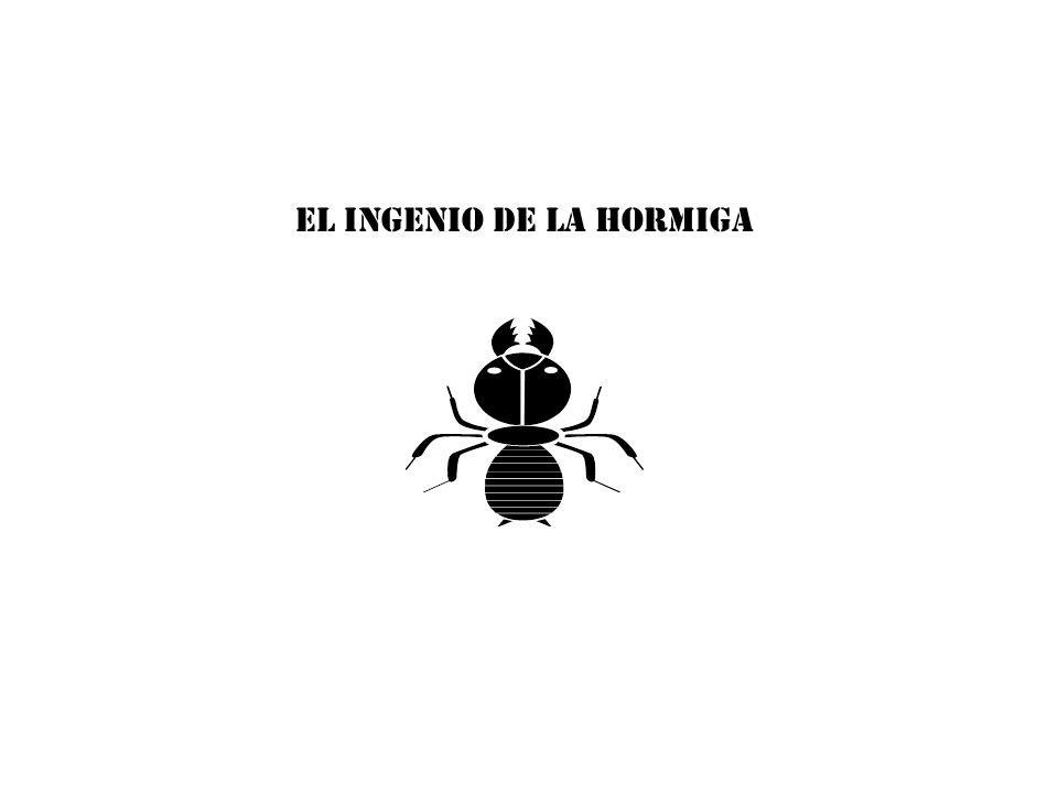EL INGENIO DE LA HORMIGA