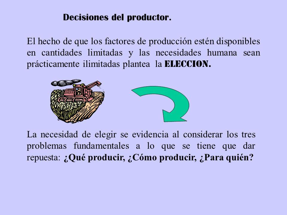 Decisiones del productor.