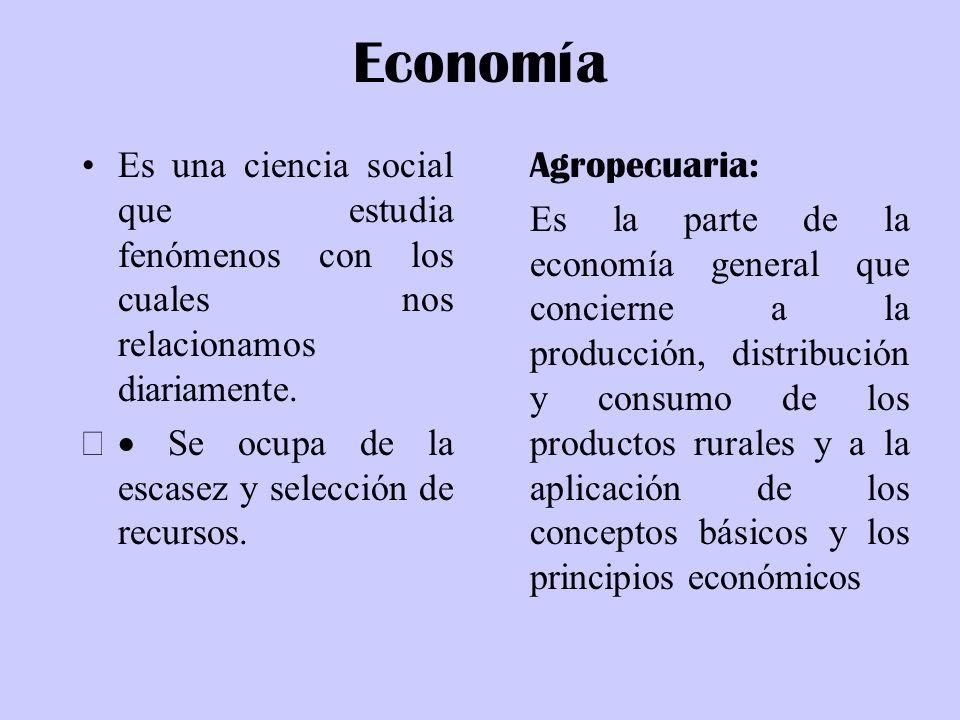 Economía Es una ciencia social que estudia fenómenos con los cuales nos relacionamos diariamente. · Se ocupa de la escasez y selección de recursos.
