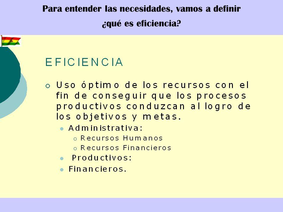 Para entender las necesidades, vamos a definir ¿qué es eficiencia