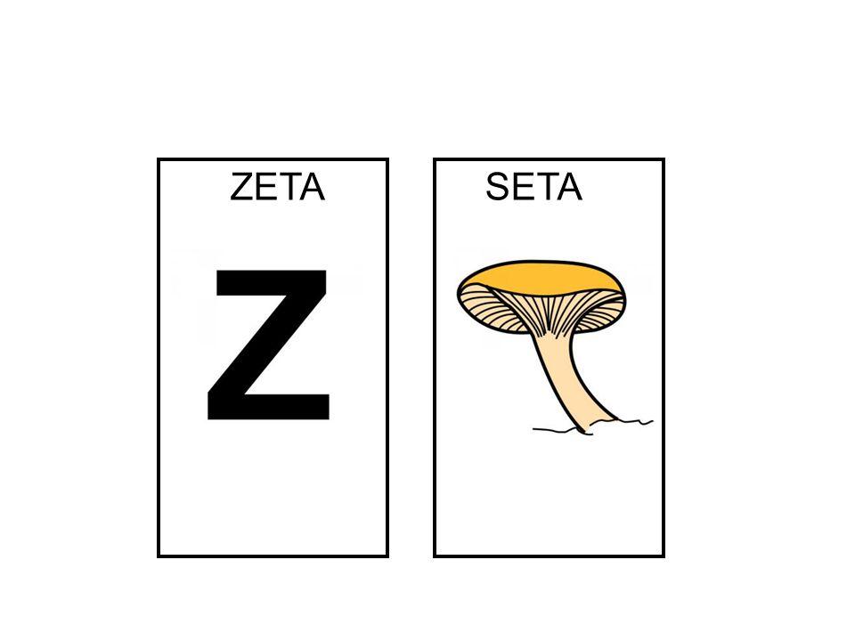ZETA SETA