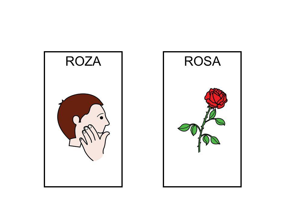 ROZA ROSA