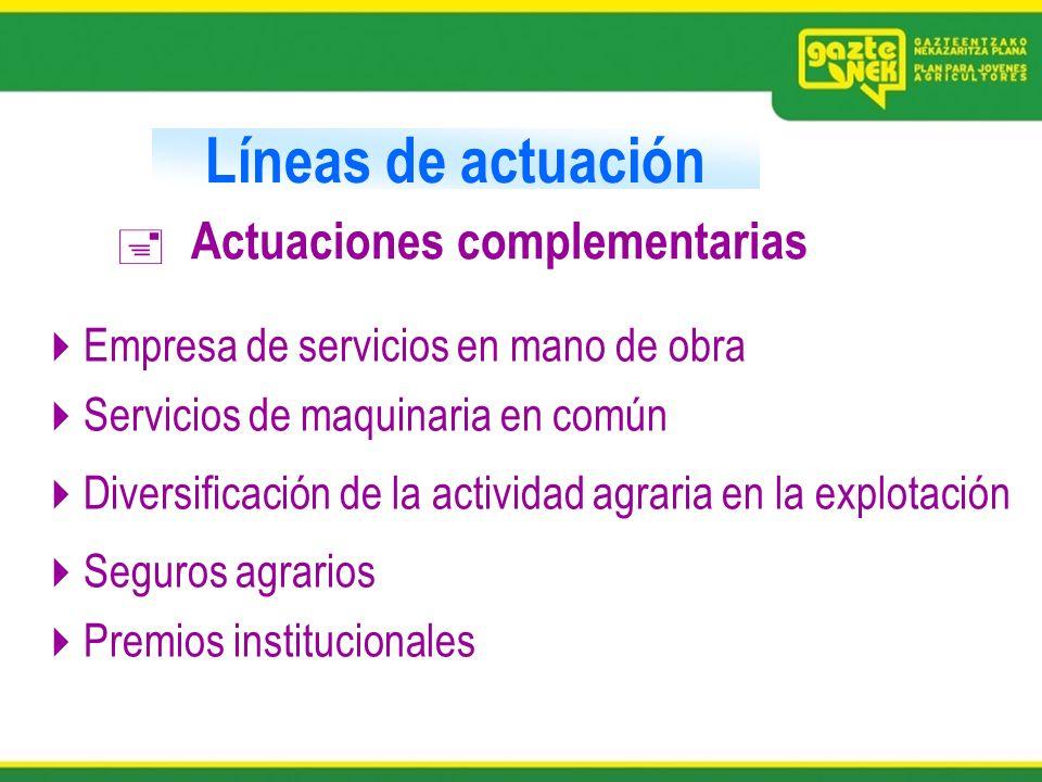 Líneas de actuación Actuaciones complementarias