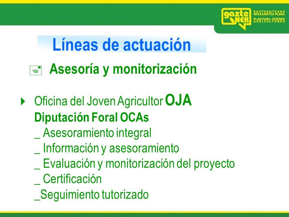 Líneas de actuación Asesoría y monitorización