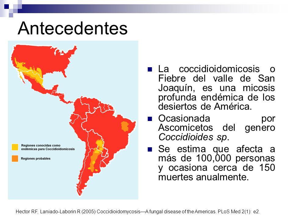 Antecedentes La coccidioidomicosis o Fiebre del valle de San Joaquín, es una micosis profunda endémica de los desiertos de América.