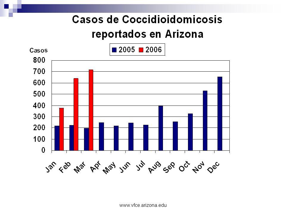 www.vfce.arizona.edu