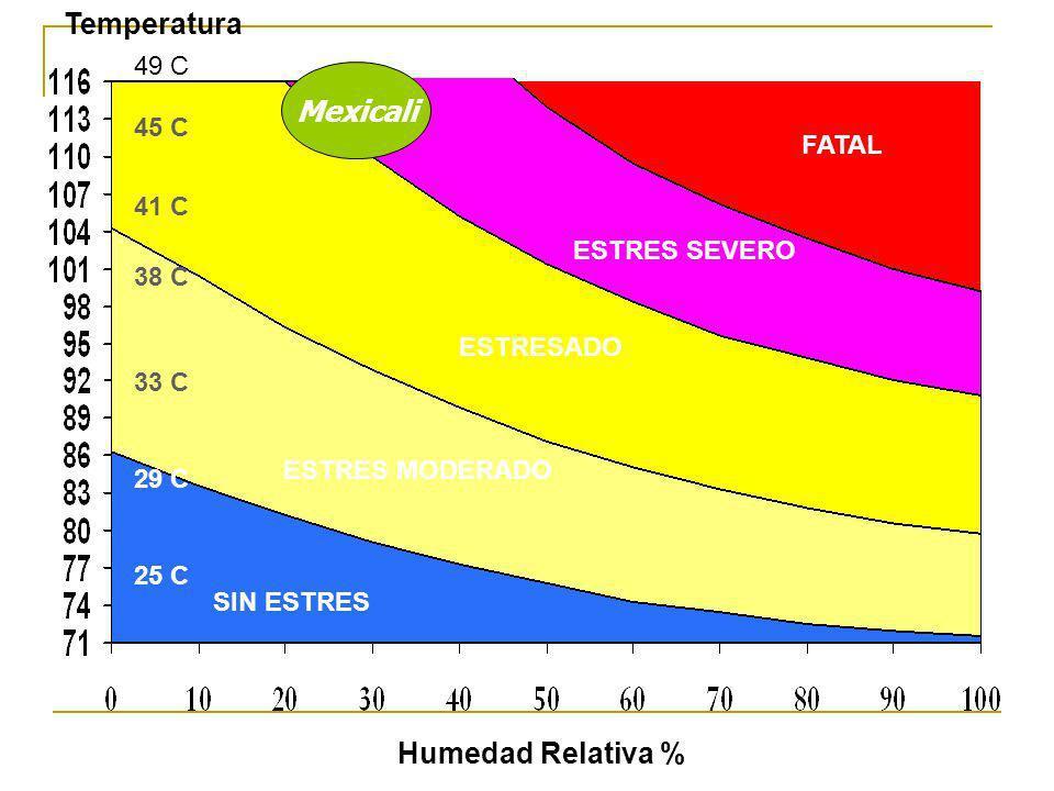 Temperatura Mexicali Humedad Relativa % 49 C 45 C FATAL 41 C