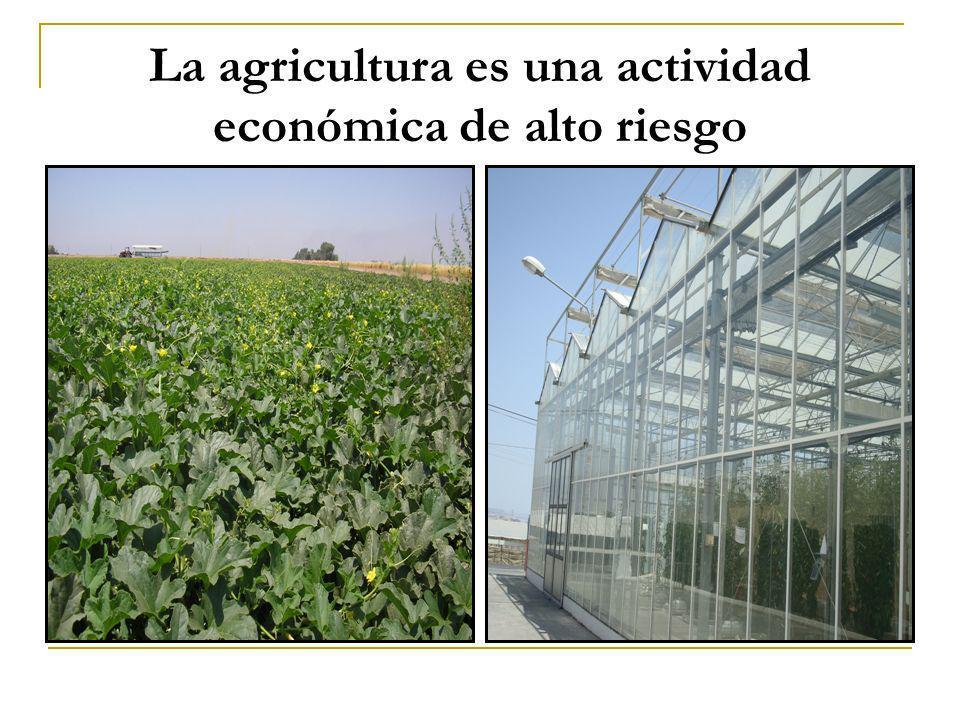 La agricultura es una actividad económica de alto riesgo