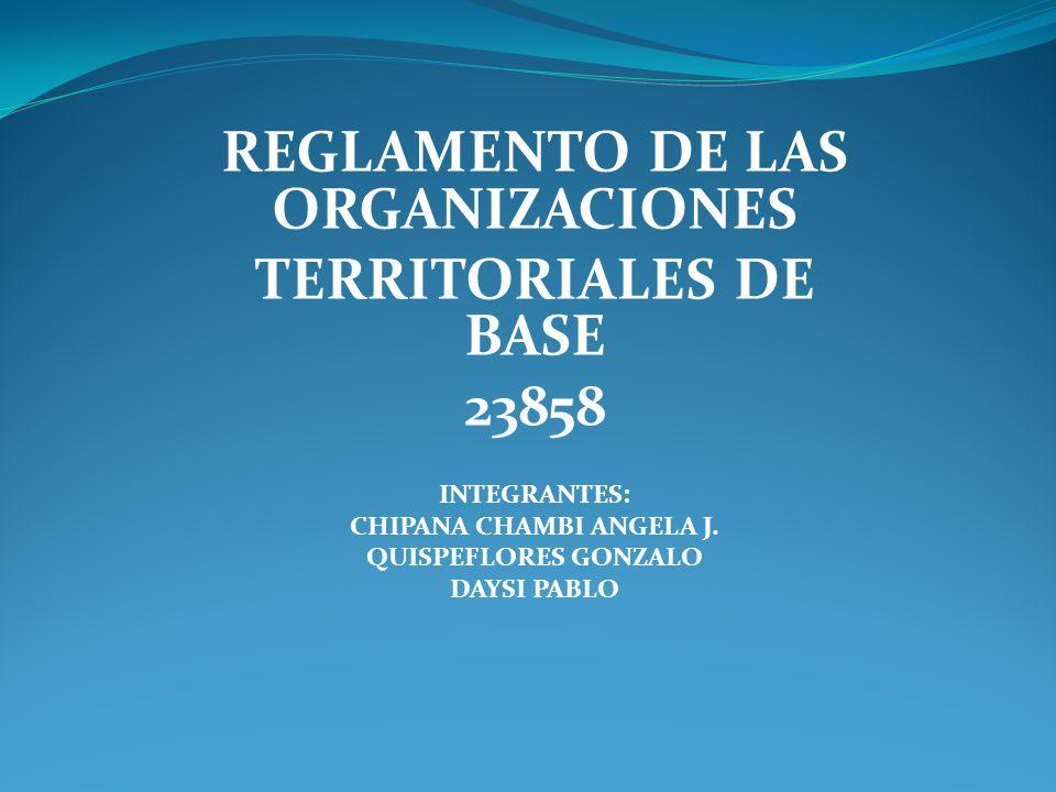 REGLAMENTO DE LAS ORGANIZACIONES CHIPANA CHAMBI ANGELA J.
