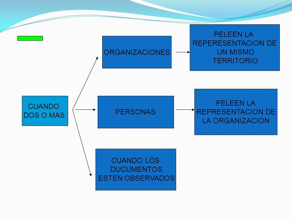 PELEEN LA REPERESENTACION DE. UN MISMO. TERRITORIO. ORGANIZACIONES. PELEEN LA. REPRESENTACION DE.