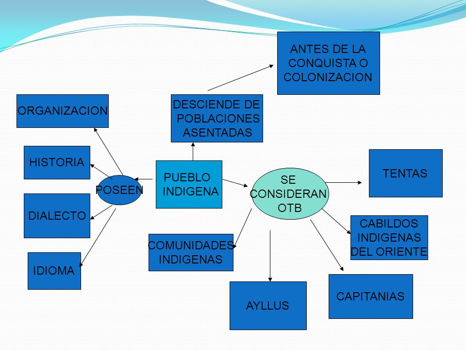 ANTES DE LA CONQUISTA O. COLONIZACION. ORGANIZACION. DESCIENDE DE. POBLACIONES. ASENTADAS. HISTORIA.