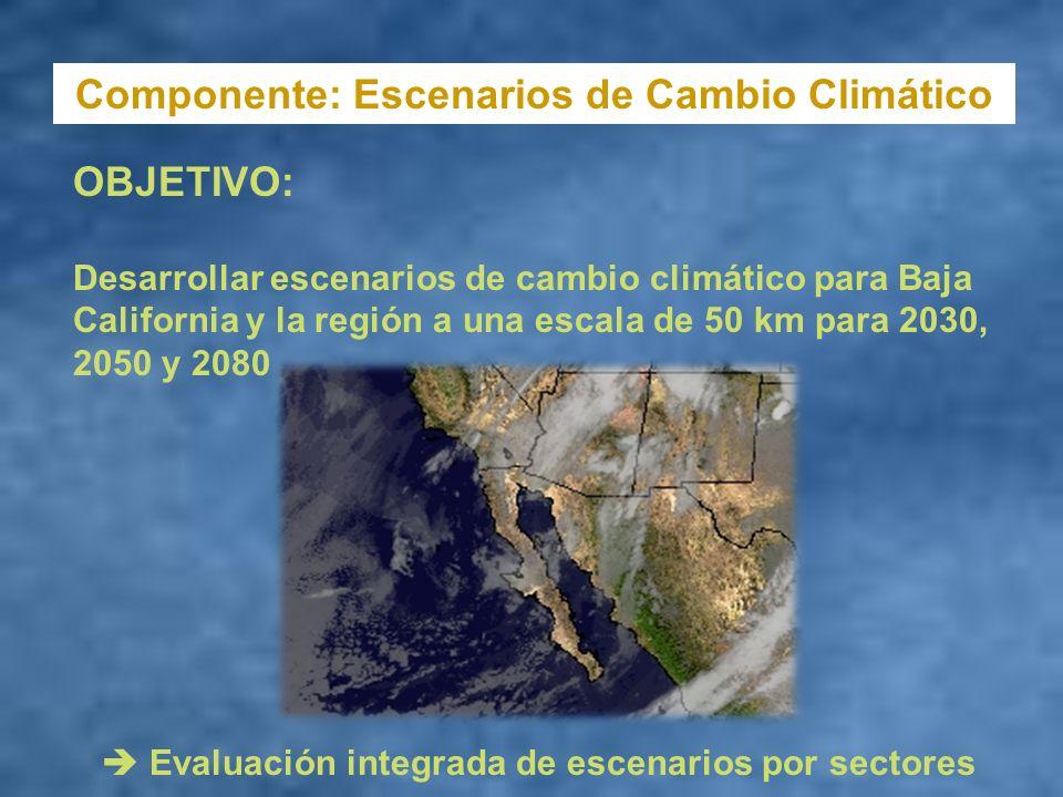 Componente: Escenarios de Cambio Climático