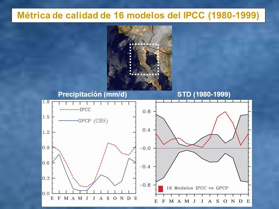 Métrica de calidad de 16 modelos del IPCC (1980-1999)