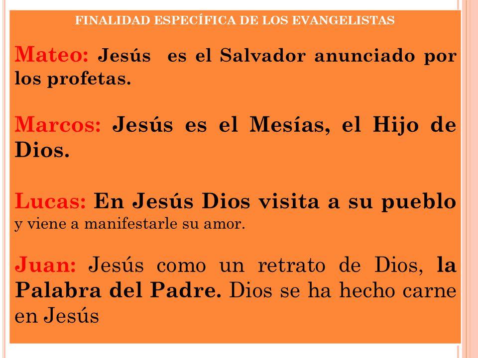 FINALIDAD ESPECÍFICA DE LOS EVANGELISTAS