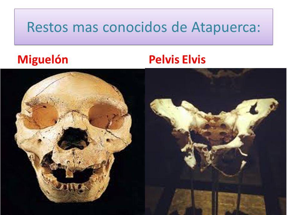 Restos mas conocidos de Atapuerca: