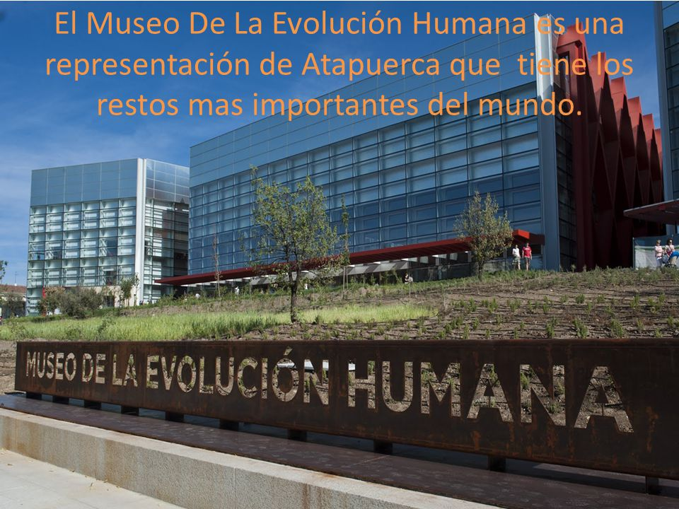 El Museo De La Evolución Humana es una representación de Atapuerca que tiene los restos mas importantes del mundo.