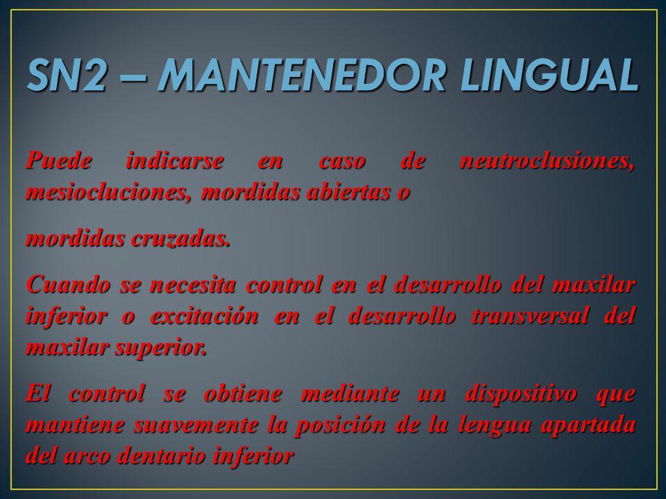 SN2 – MANTENEDOR LINGUAL