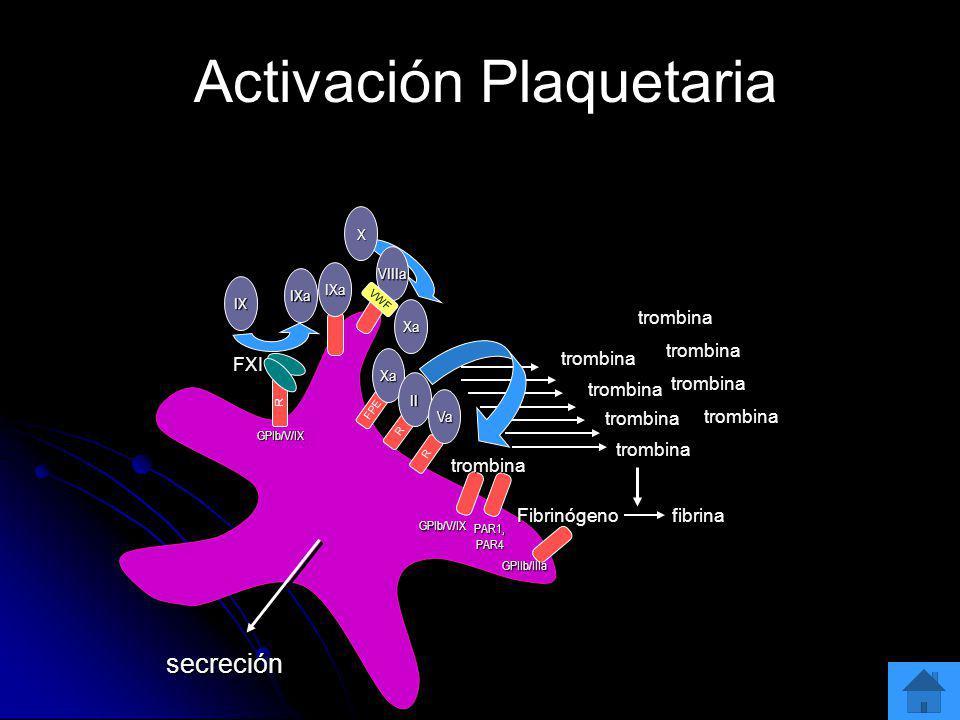 Activación Plaquetaria